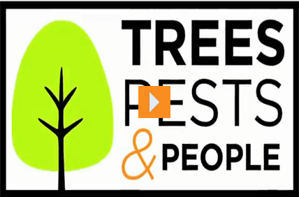 Trees, Pests, and People
